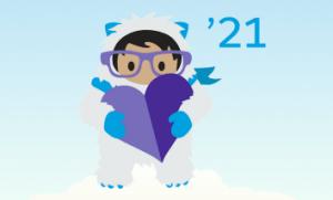 Winter salesforce release 21