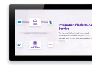 Partners. Complementary Solutions for Salesforce jitterbit