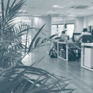 espacios S4G Consulting