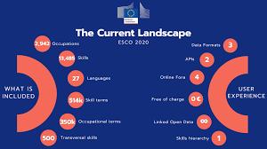 gráfico European Skills competences