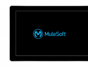 mulesoft partners