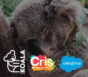 webinar CRM para ONGs
